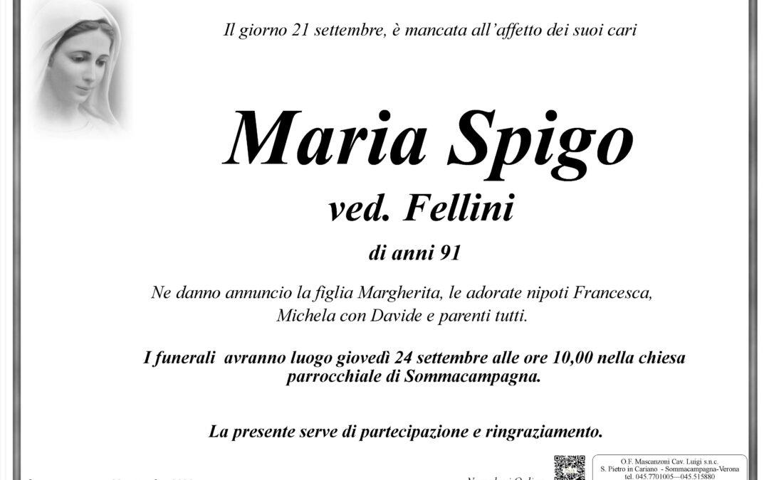 SPIGO MARIA VED. FELLINI